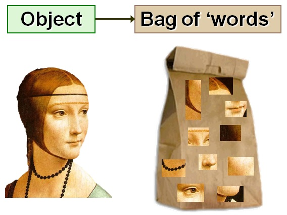 Illustration of Bag of words model in images